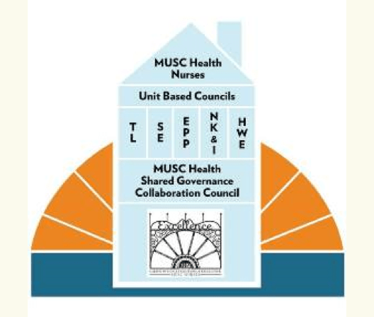 Image that shows MUSC shared governance model
