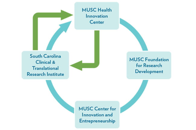 Innovation Cycle at MUSC