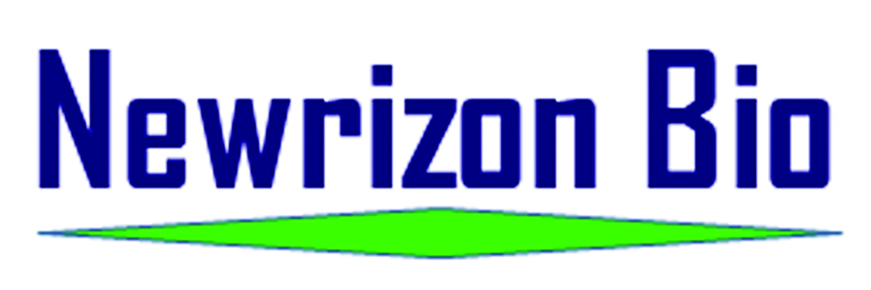 NewRizon Logo Wang
