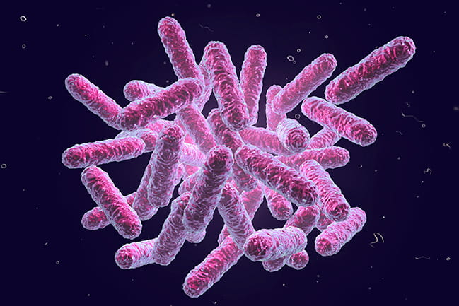 Stock Image of Microbes