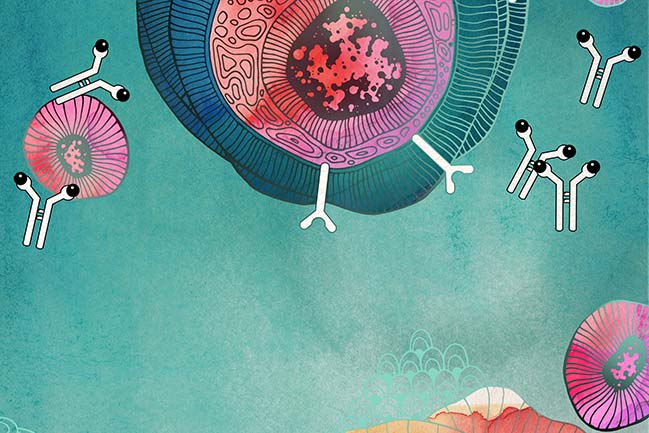 Illustration accompanying immunotherapy for lung cancer story