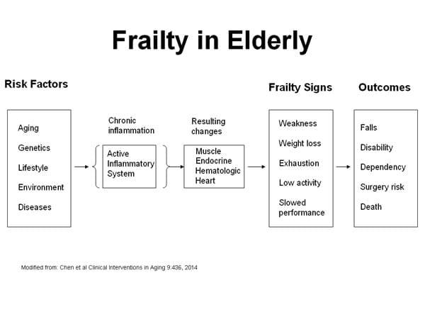 Prevention Treatment Of Frailty