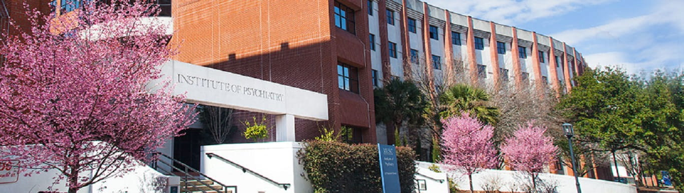 Institute of Psychiatry Exterior