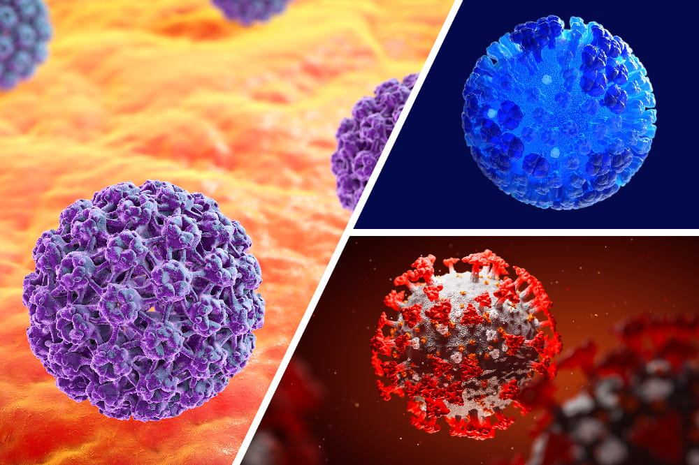 Collage of HPV virus, influenza virus and SARS-CoV-2 virus